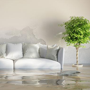 Wasserschäden